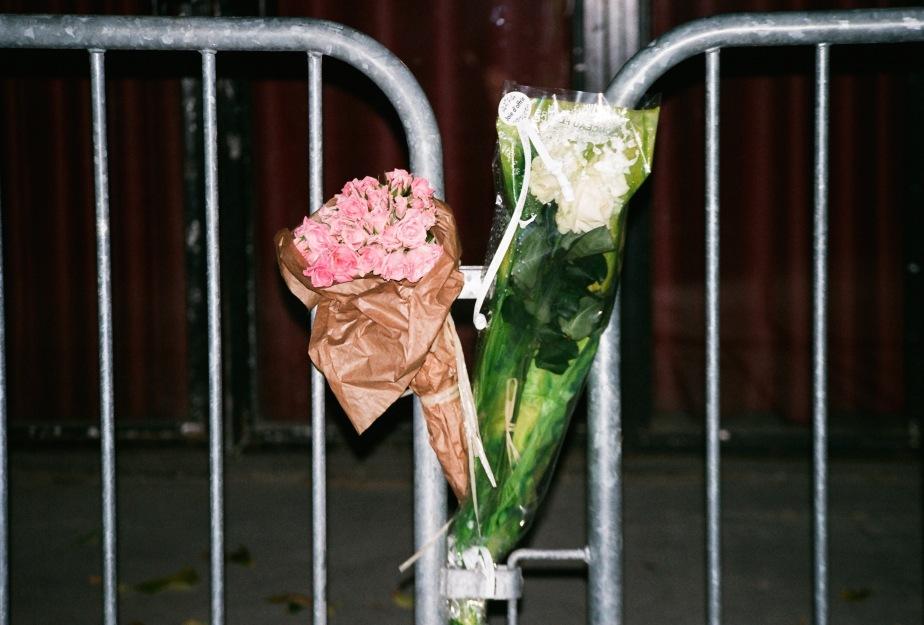 13-november-flowers